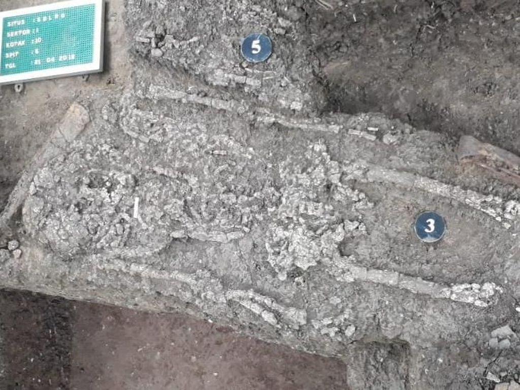 Kerangka Manusia dari Era 45 SM di Subang Memiliki Tinggi 150 Cm