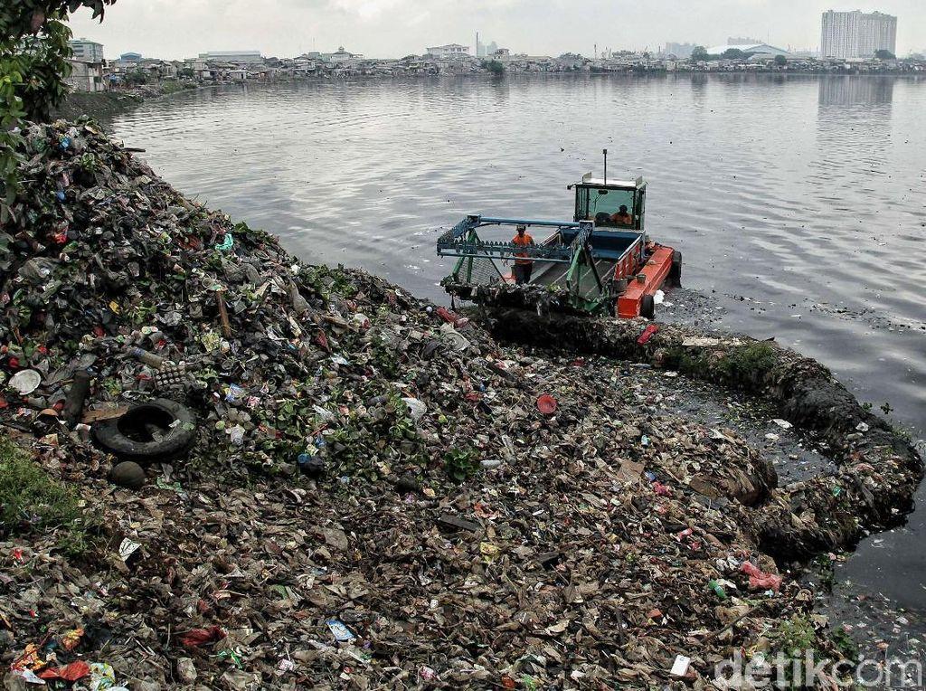Foto: Waduk Pluit Dibersihkan