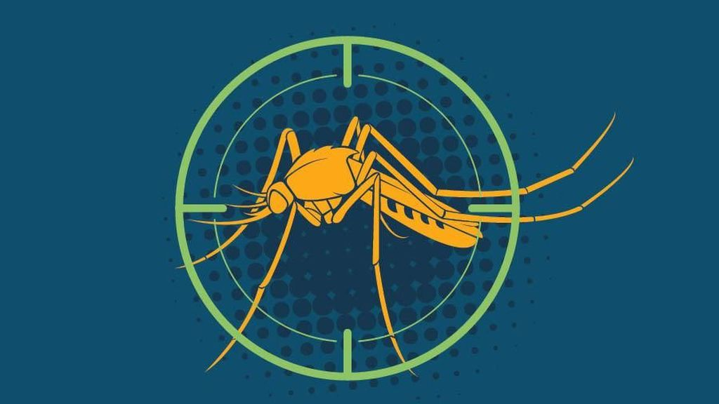 Infografis: Fakta Seputar Malaria di Indonesia