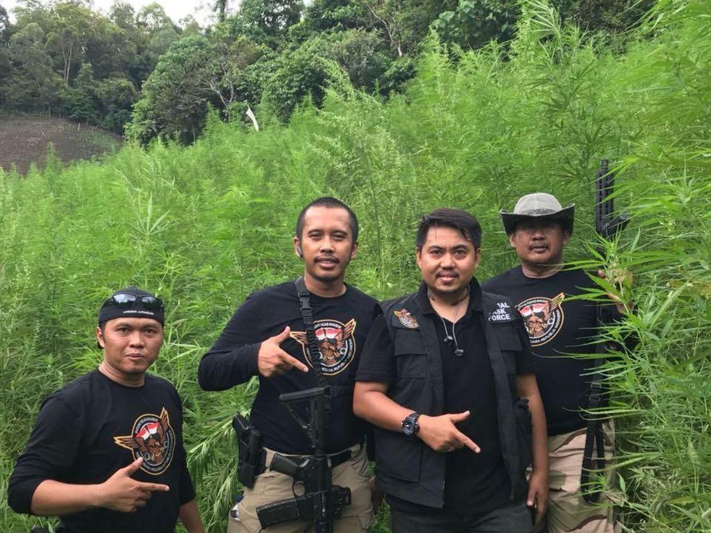 7 Hektare Ladang Ganja di Aceh Dibongkar BNN-Polri