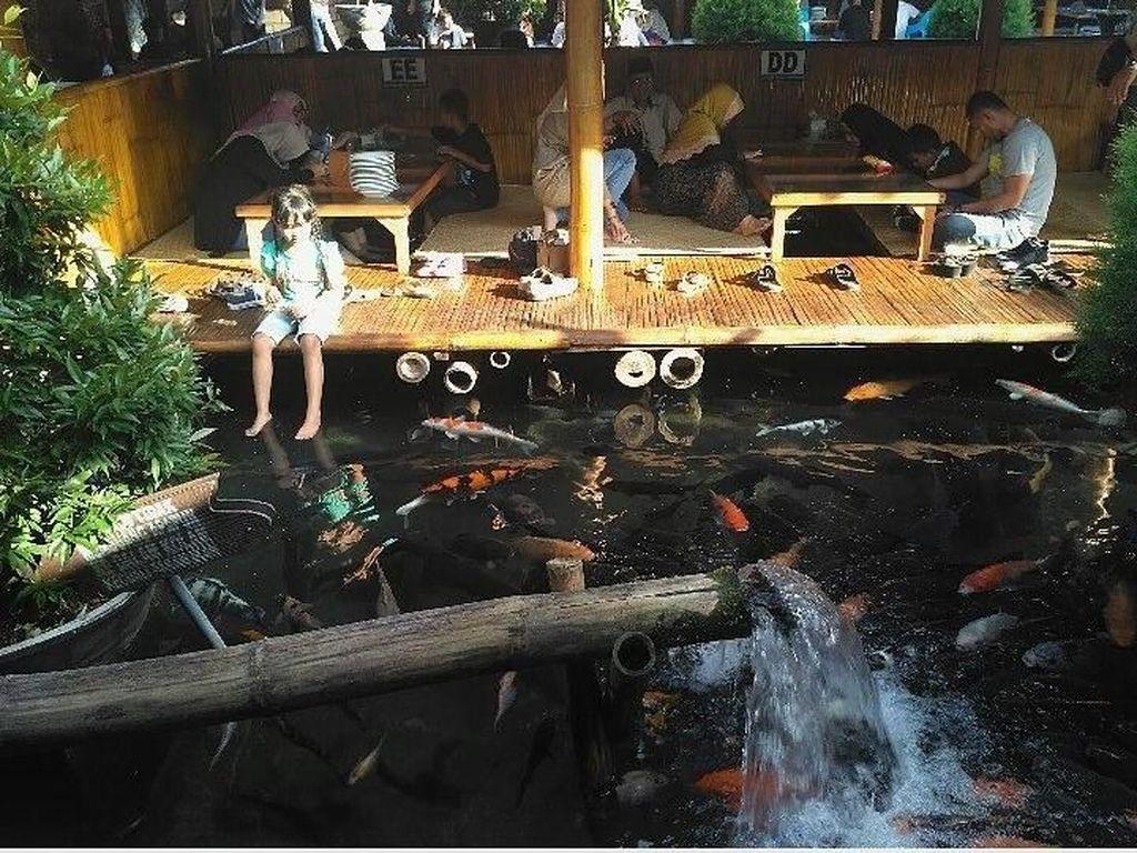 Liburan ke Malang, Asyiknya Makan Lesehan Sambil Main Ikan di Sini