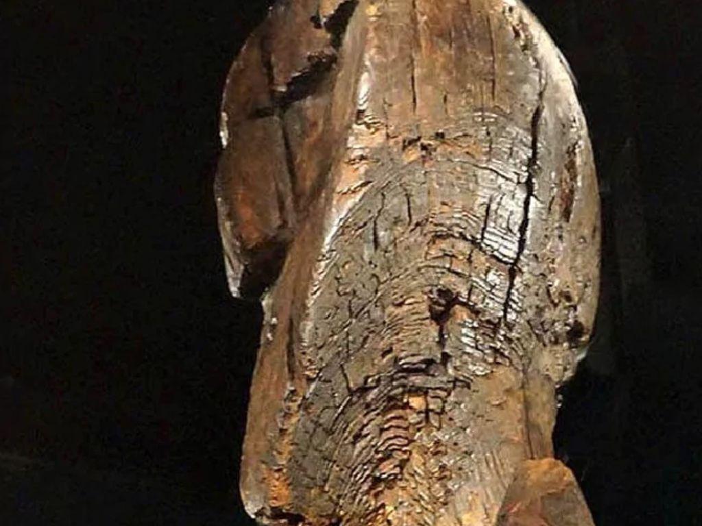 Foto: Ini Patung Kayu Kuno dari Zaman Es Berusia 11.600 Tahun