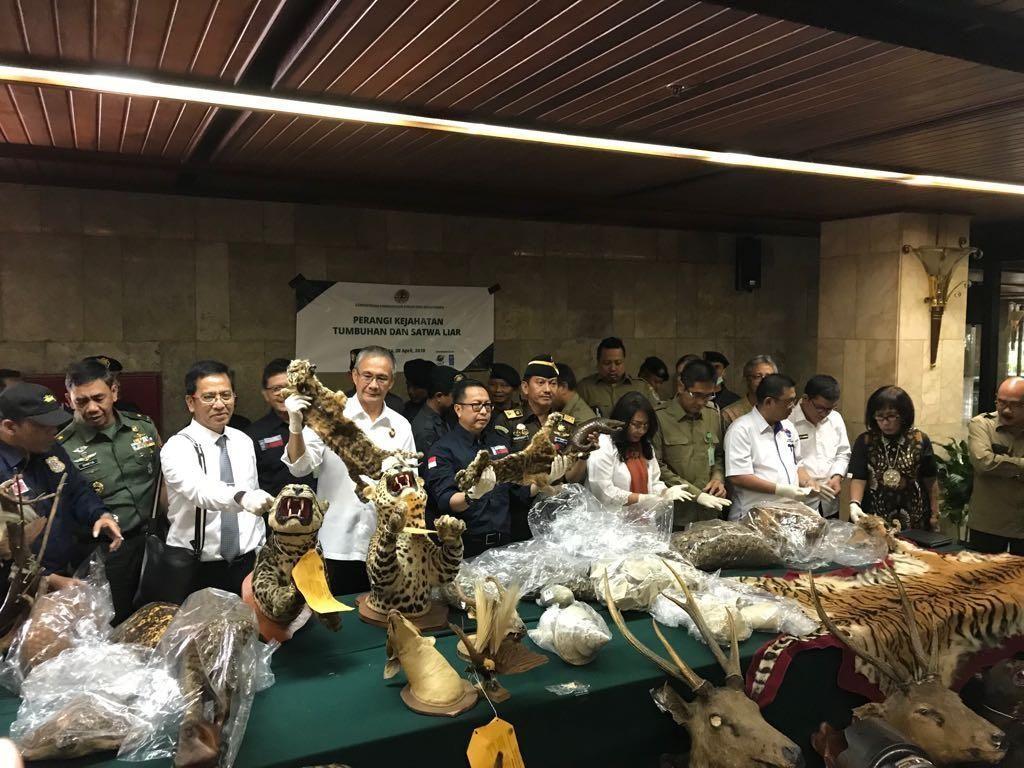 Menteri LHK: Kejahatan Satwa Liar Peringkat Ke-3 di Indonesia