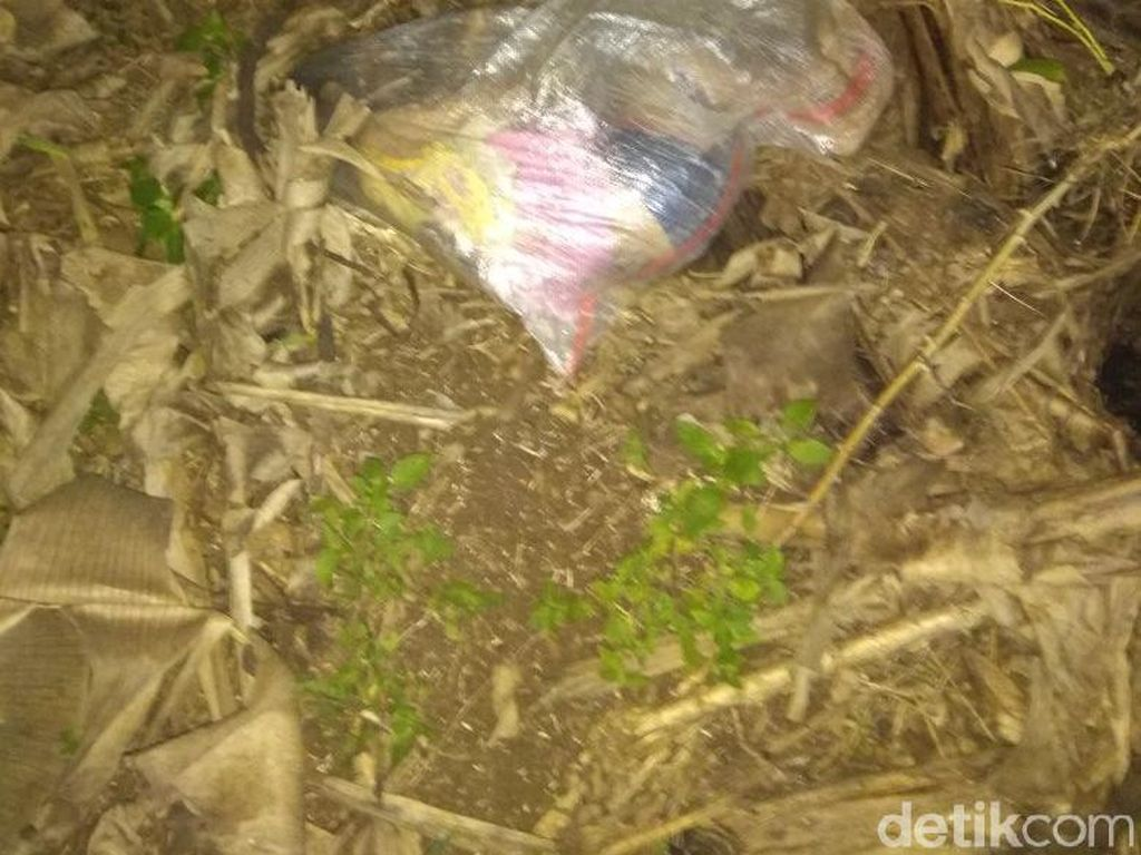 Foto: Geger Penemuan Mayat Bocah Dalam Karung di Bogor
