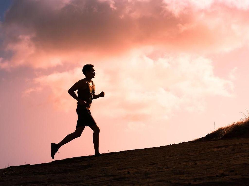 Lari ke Gunung Demi Buang Dosa Jarang Olahraga