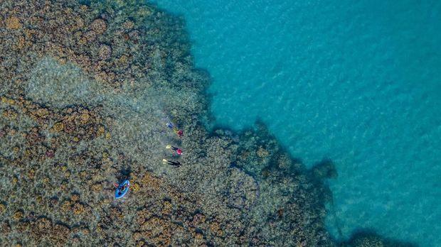Kerusakan terumbu karang di Taman Nasional Karimun Jawa terjadi akibat penggunaan potas dan cantrang oleh nelayan, coral bleaching, dan kapal tongkang yang berlabuh di kawasan konservasi tersebut.