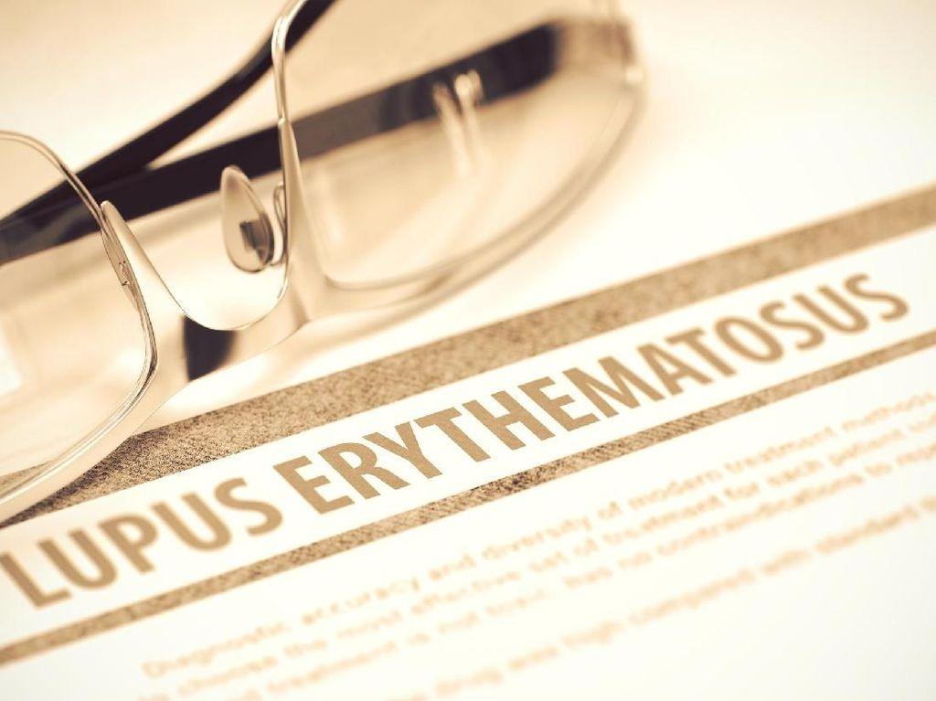 Bakteri dalam Usus Bisa Jadi Faktor Penyebab Lupus