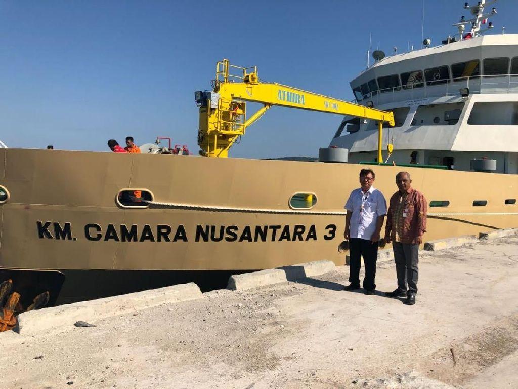 Dua Kapal Ternak Angkut 1.000 Sapi ke Jakarta