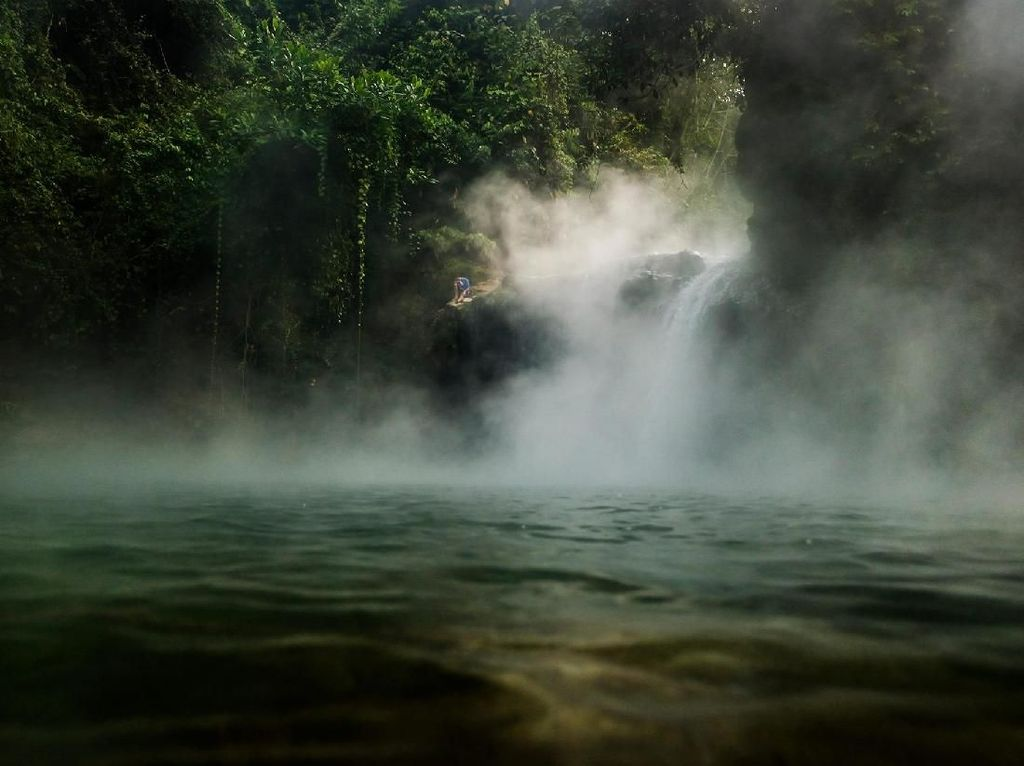Amazon: Rumah Asli Ikan Arapaima Gigas, Bukan Sungai Brantas