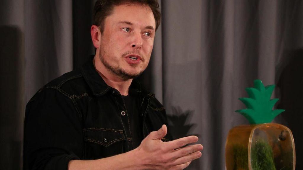 Elon Musk Bela Tesla dan LGBTQ