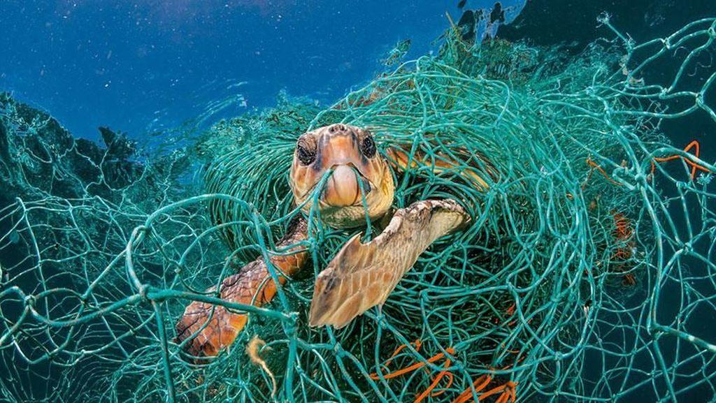 Potret Mengerikan Alam Tercemar Sampah Plastik
