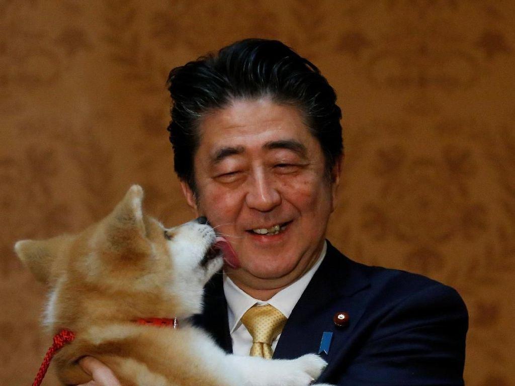 Foto: PM Jepang Bawa Anak Anjing Akita ke Rusia