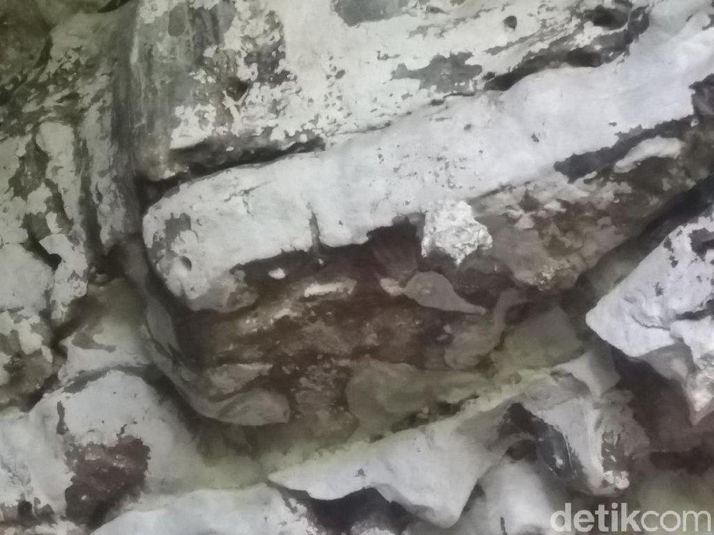 Peradaban Tertua Dunia di Sulsel, dari Cap Purba hingga Tanam Padi