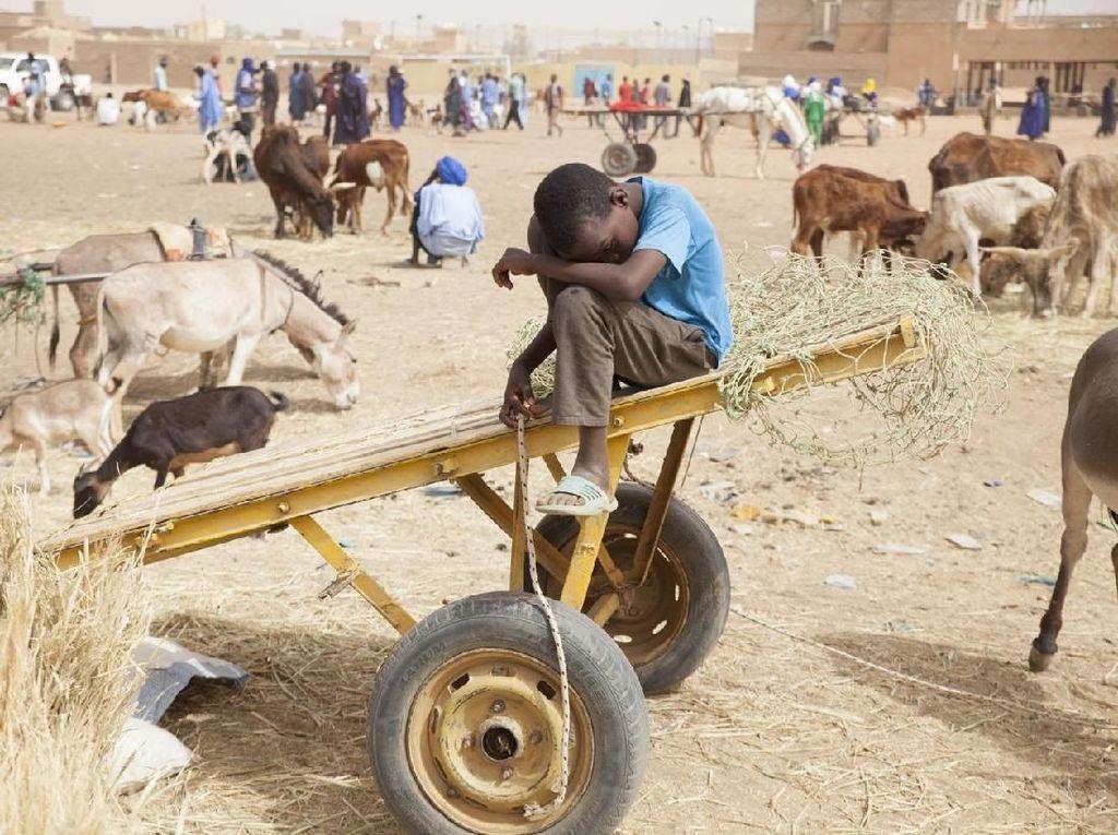 PBB Ingatkan Kekurangan Pangan Melanda Dunia Akibat Pandemi