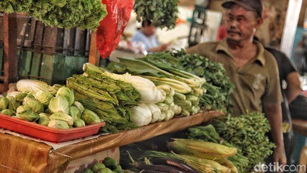 Ilustrasi cara menyimpan sayur