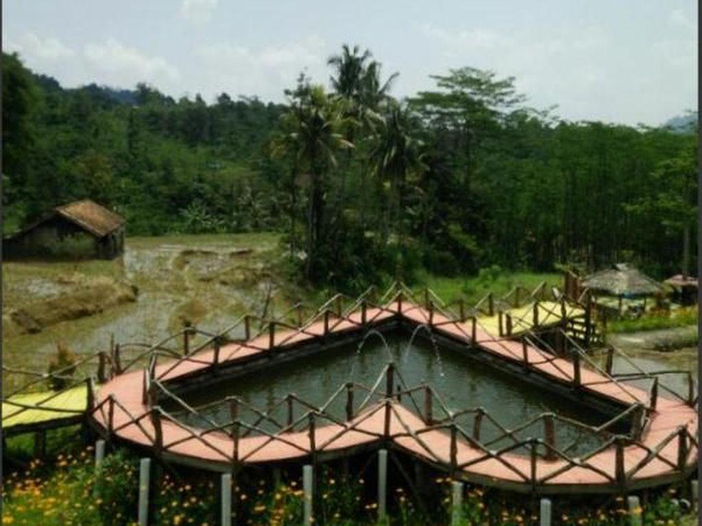 Long Weekend Asyik di Gunung Kirampog