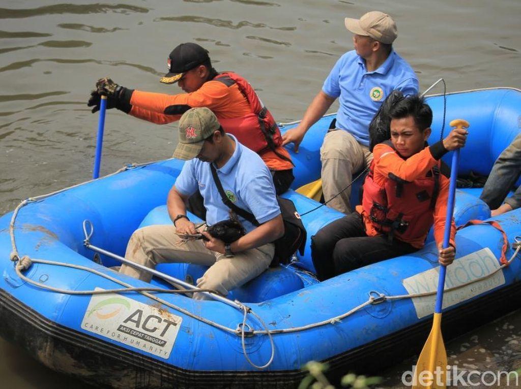 Foto: Penampakan Buaya di Sungai Citarum