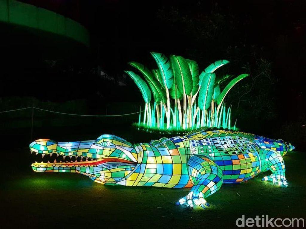 Saat Kebun Binatang di Sydney Bermandikan Cahaya, Cakep!