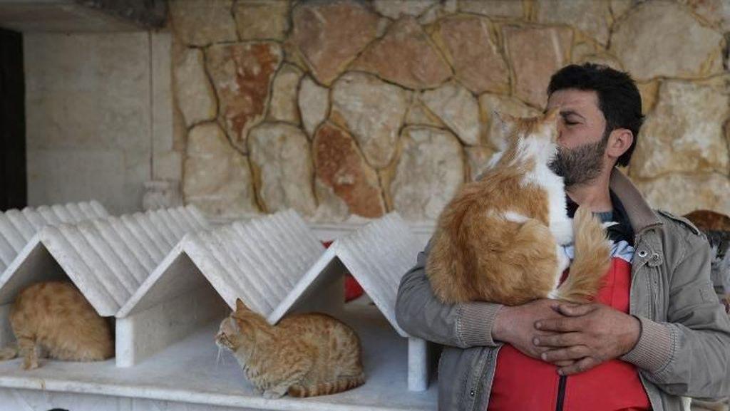 Foto: Jaleel, Manusia Kucing di Tengah Perang Suriah