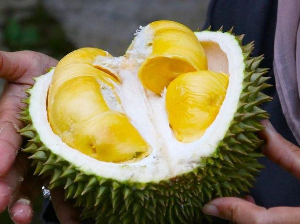 Heboh Bau Durian di Sriwijaya Air