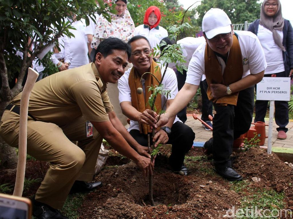 PLN Tanam Pohon untuk Peringati Hari Lingkungan Hidup