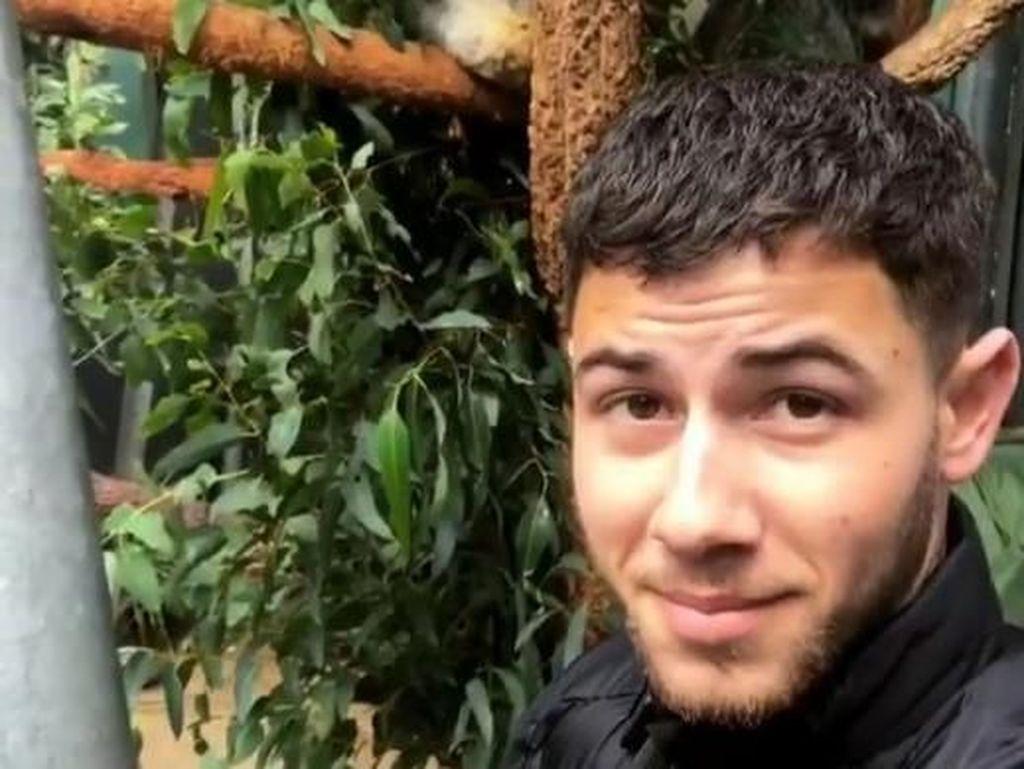 Gemasnya Nick Jonas Selfie Bareng Koala di Kebun Binatang