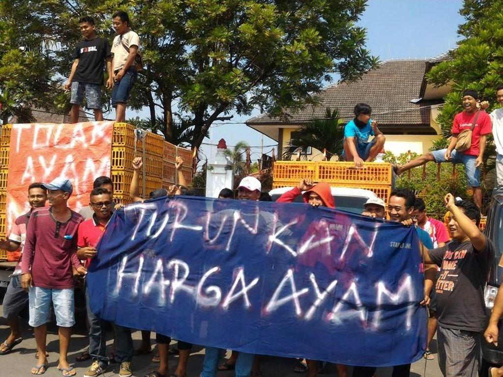 Harga Ayam Naik Terus Jelang Lebaran, Pedagang Solo Raya Demo