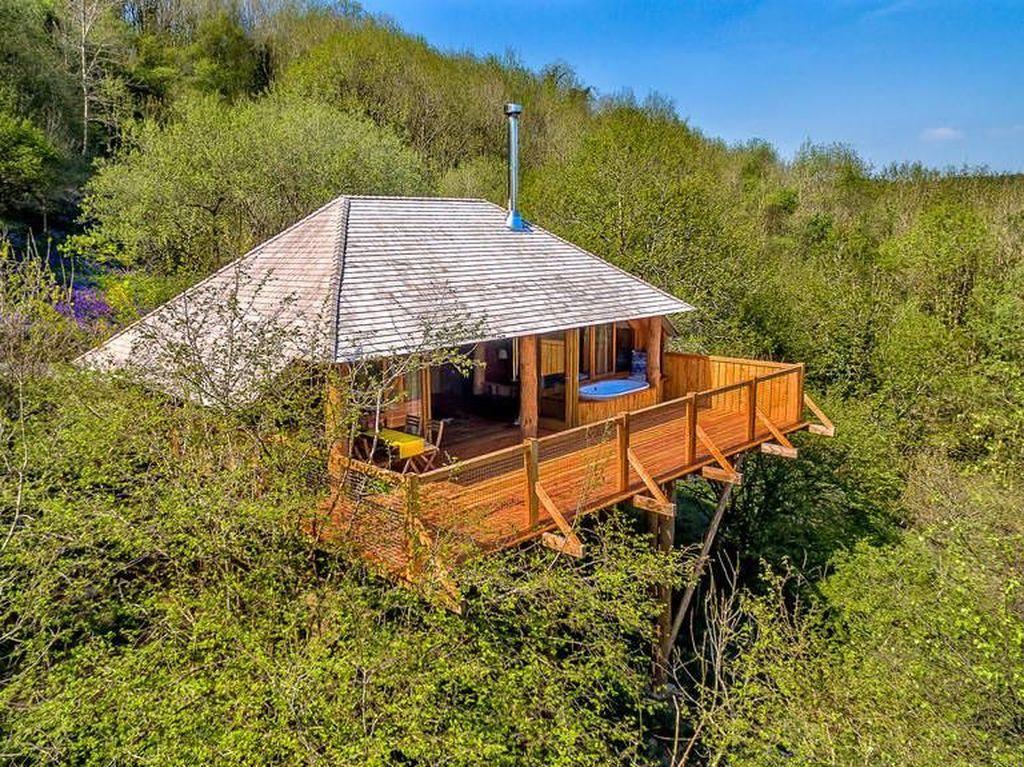 Foto: Ini Rumah Pohon atau Hotel Bintang 5?