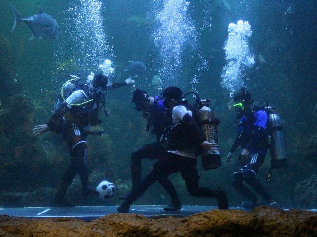 Sambut Piala Dunia, Seaworld Hadirkan Atraksi Juggling Bola Dalam Air