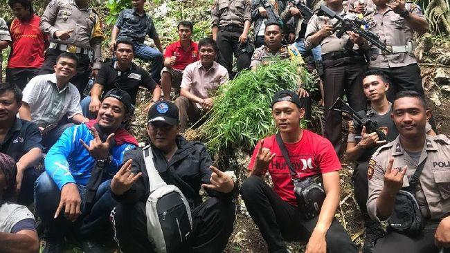 Polisi Temukan 1 Hektare Ladang Ganja di Nias
