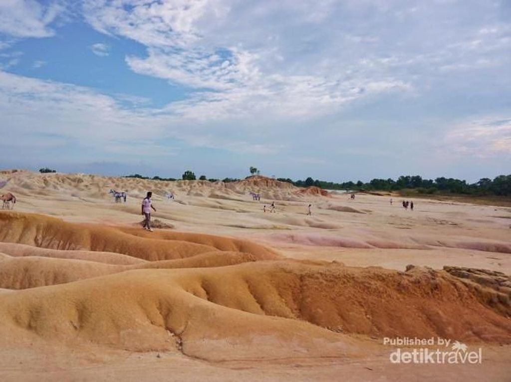 Mudik ke Bintan, Yuk Hunting Foto Ala Gurun Pasir