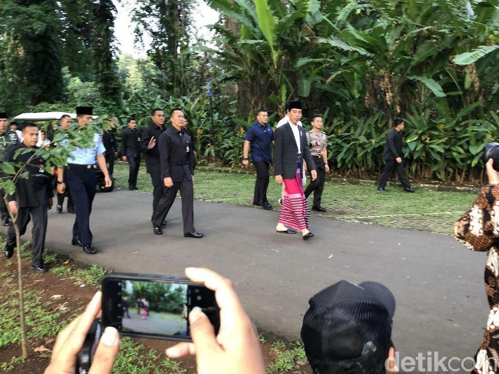 Berjas Biru dan Sarung Merah, Jokowi Salat Id di Kebun Raya Bogor