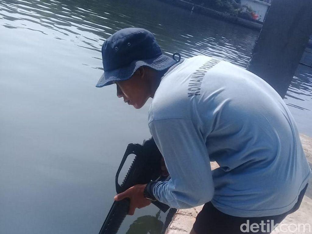 Saat Pasukan Katak Buru Buaya di Tanjung Priok