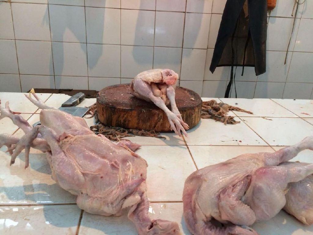 Belum Turun, Daging Ayam Masih Dijual Rp 45.000/Ekor