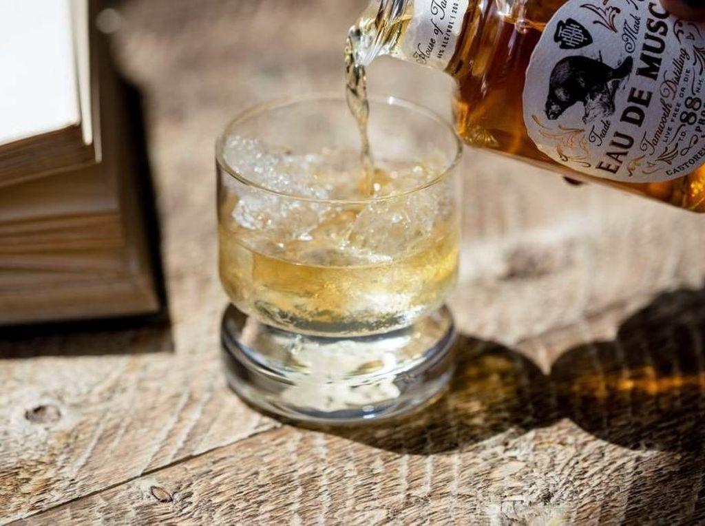 Mau Cicip? Whisky Ini Dibuat dari Minyak Pantat Berang-berang