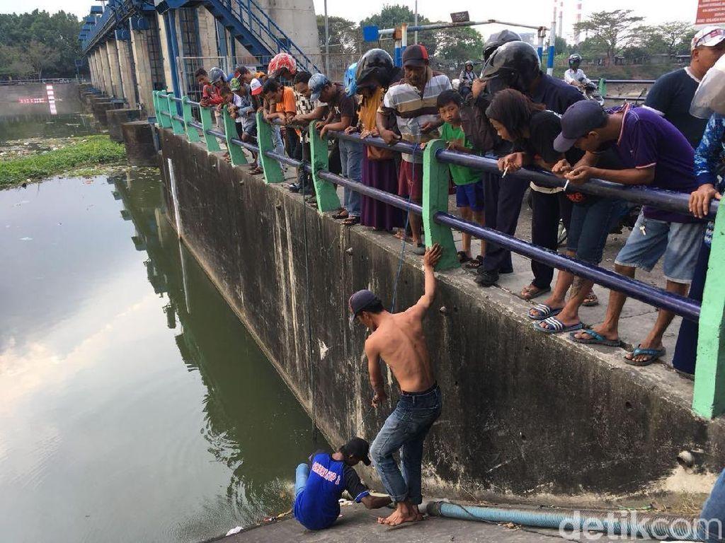 Diburu Warga di Sungai Brantas, Ikan Arapaima Dijual Rp 20 Ribu/Kg