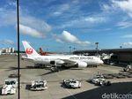 Kadar Alkohol Pilot Japan Airlines 9 Kali Lebihi Batas Standar