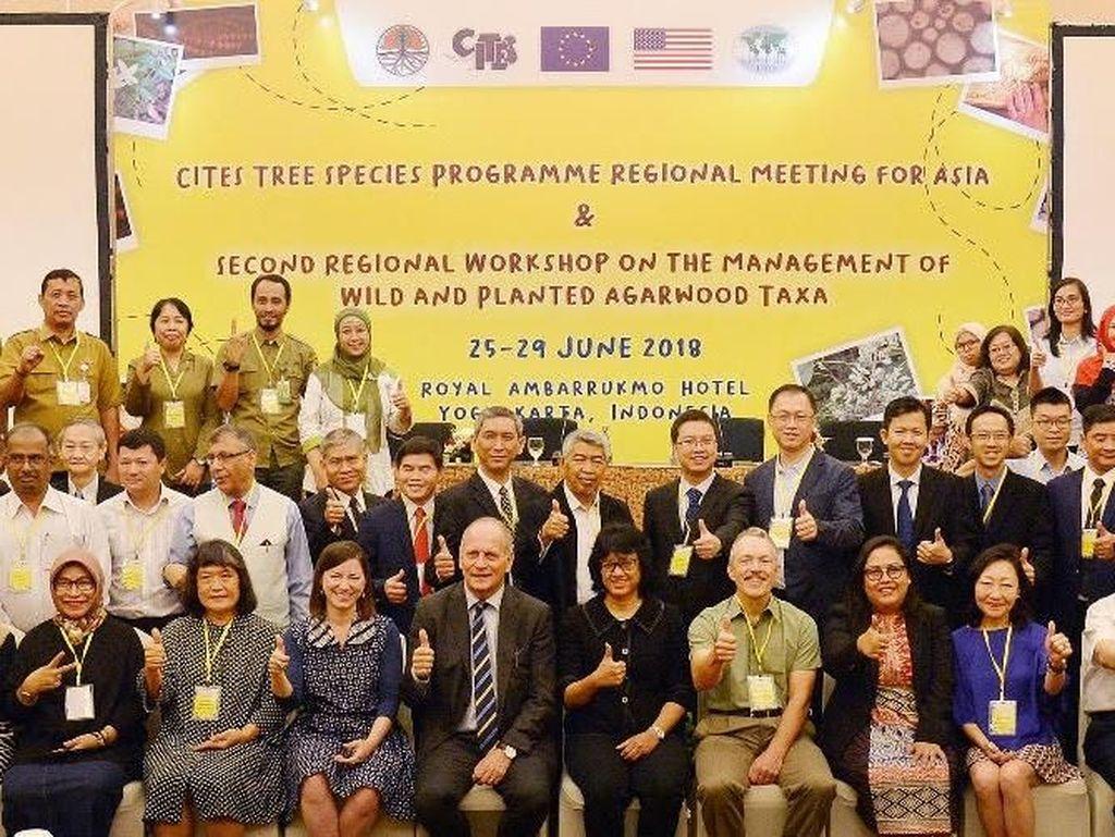 KLHK Ajak Lembaga Internasional Lestarikan Tanaman Terancam Punah