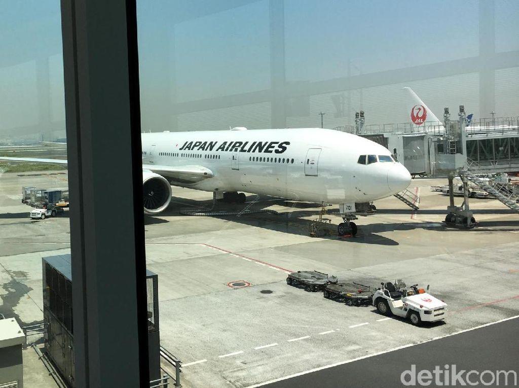 Sepi Penumpang, Japan Airlines Pangkas Rute Internasional