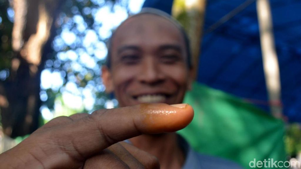 Unik, Pemilih di TPS ini Ganti Tinta dengan Kunyit