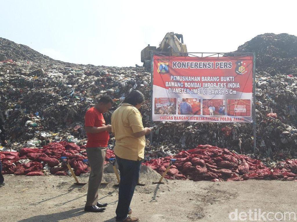 Membusuk, 70 Ton Bawang Merah Palsu Sitaan Dimusnahkan