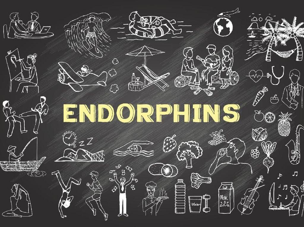 5 Fungsi Hormon Endorfin Bagi Tubuh Manusia (1)