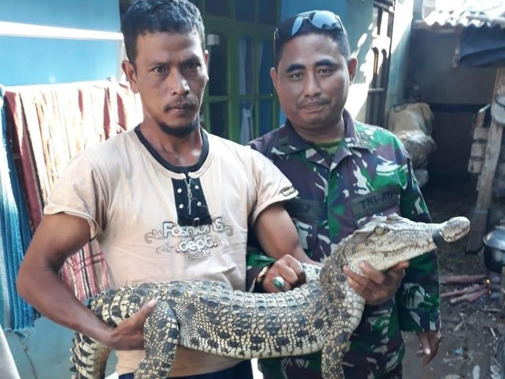 Pemancing Tangkap Buaya di Sungai Citarum Bandung
