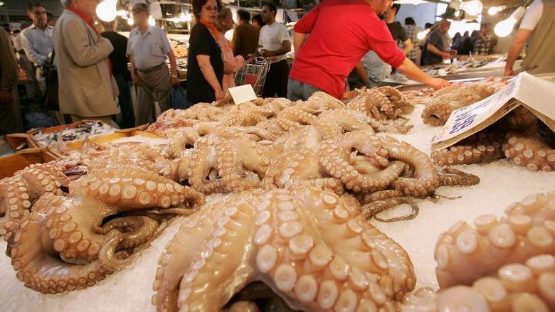 Rabio si Oktopus: Meramal Piala Dunia, Mati, Dimakan