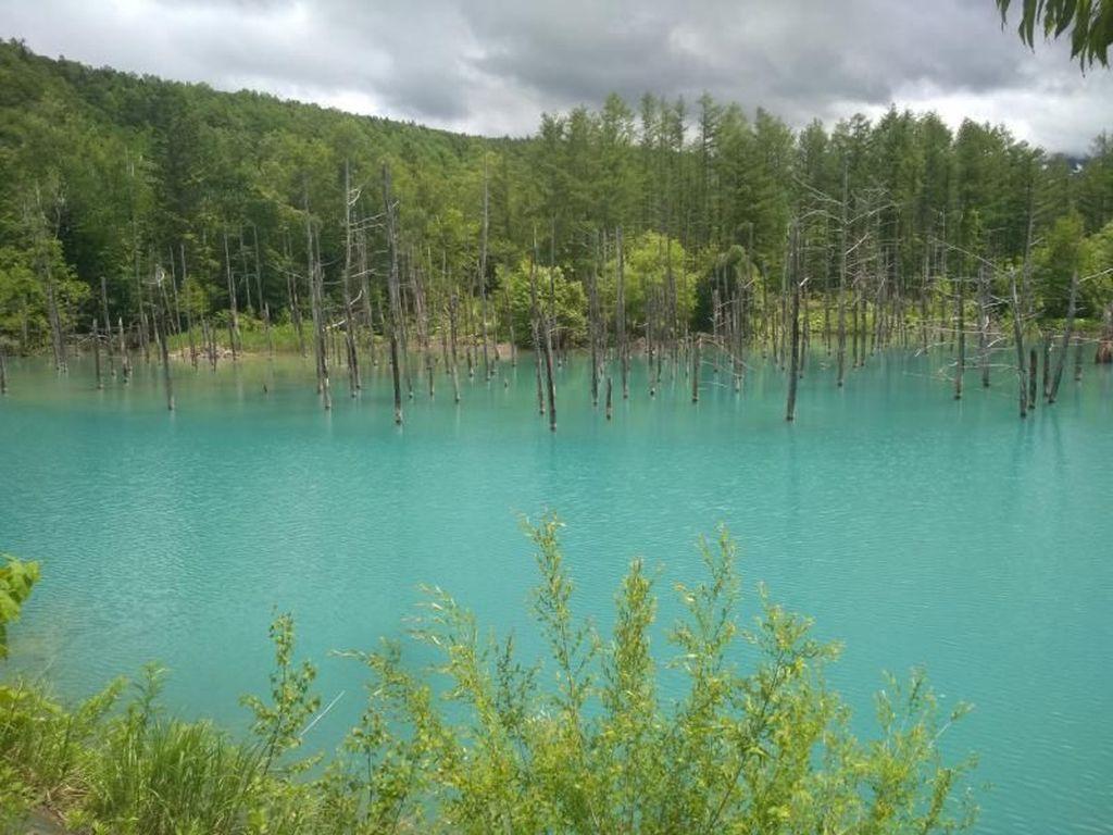 Danau Biru Jepang yang Memukau Tanpa Photoshop
