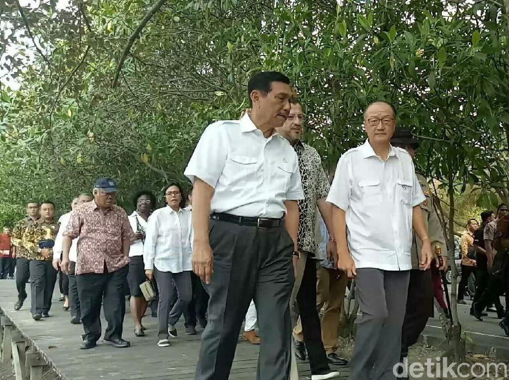 Luhut Ajak Presiden Bank Dunia Keliling Hutan Mangrove di Bali