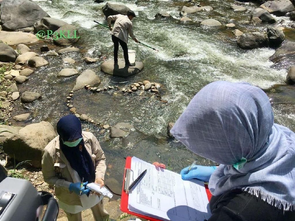 Ini Upaya KLHK Jaga Kualitas Air Sungai
