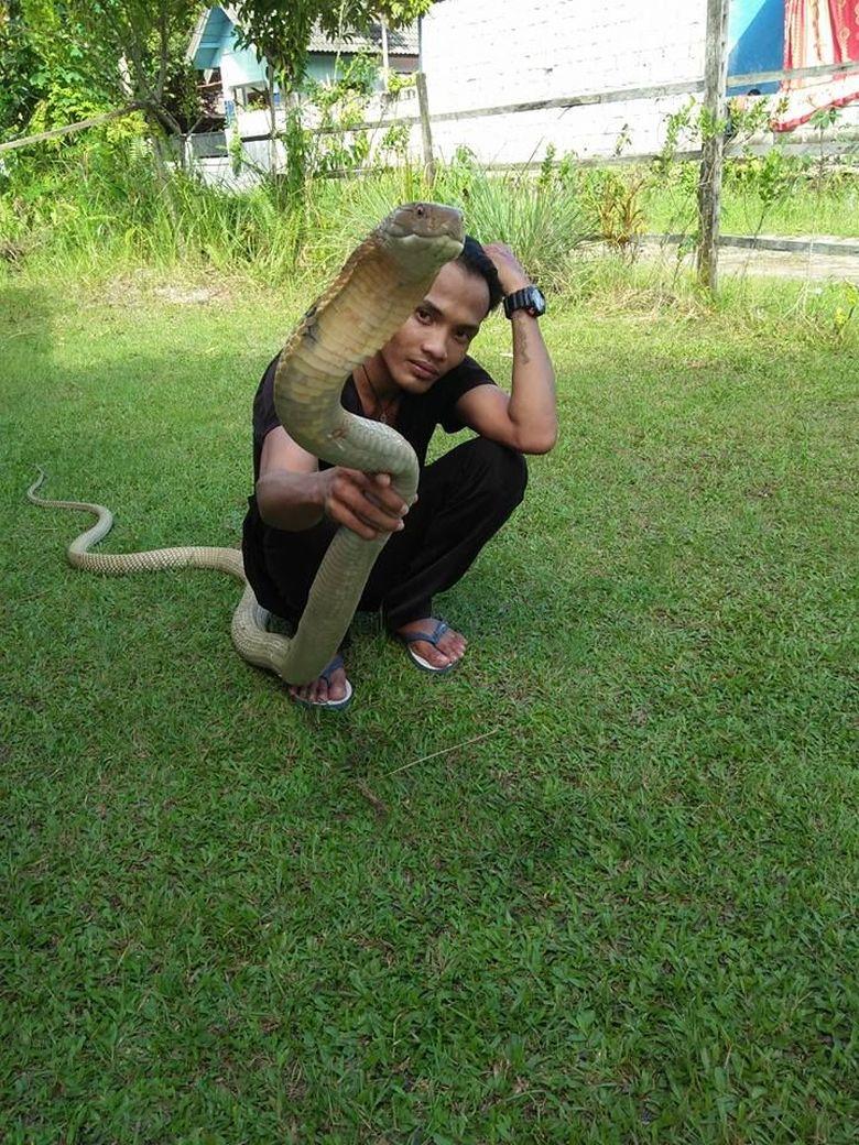 Potret Aksi Rizky Sebelum Tewas Dipatuk King Cobra di CFD