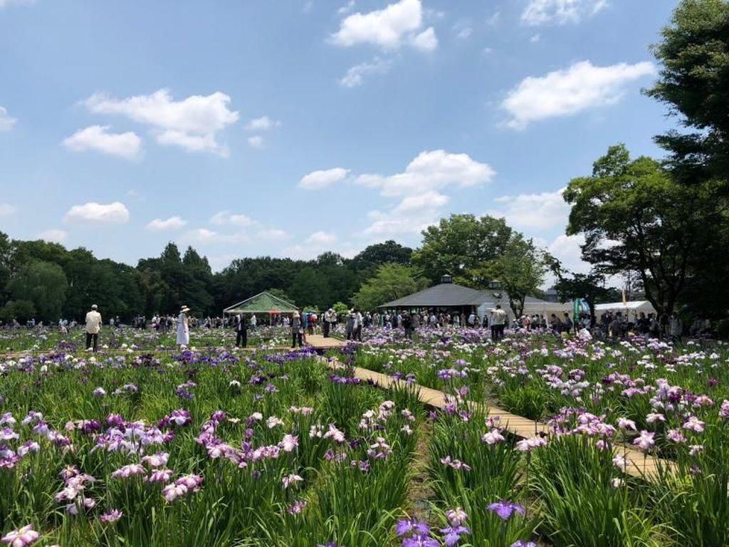 Taman Bunga Bagai Lukisan di Tokyo
