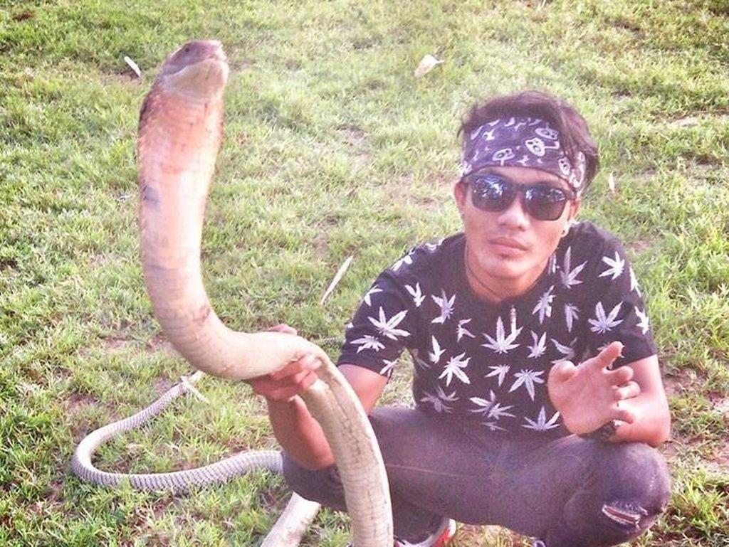 Kisah Rizky yang Diyakini Mati Suri dan Bersanding dengan King Cobra